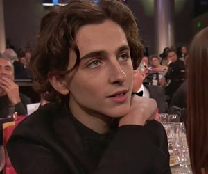 timothee chalamet and actor image