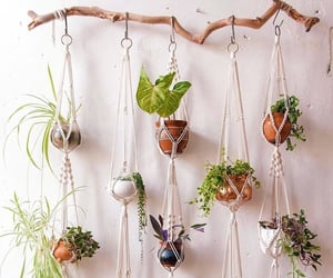 diy, hanging, and home image