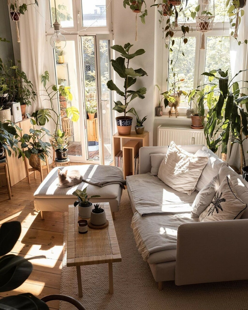 Aloha, room decor, and cozy room image