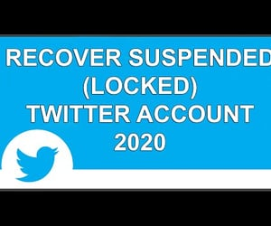 video, get back to twitter, and twitter account support image