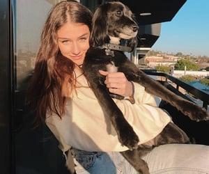 dog, girl, and model image
