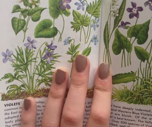 book, plants, and indie image