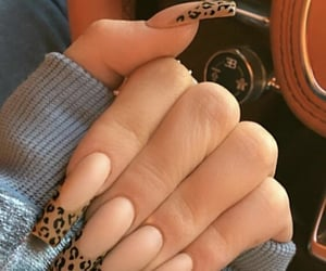 nails, leopard, and acrylic image