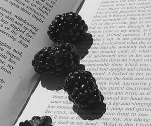 aesthetics, berries, and book image