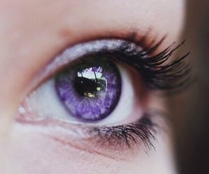 beauty, eyes, and purple image