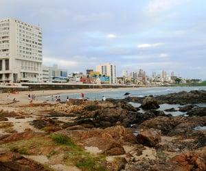 brasil, tropical, and barra image
