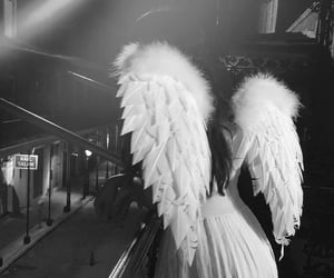 angel, black and white, and camila cabello image