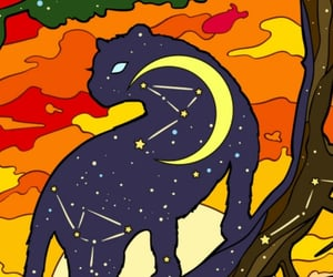 background, cat, and constellation image