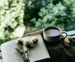 book, cup, and view image