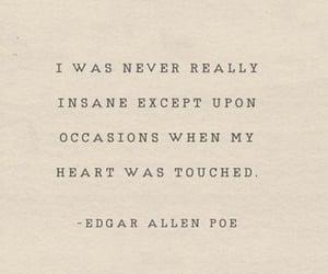 book, edgar allan poe, and heart image