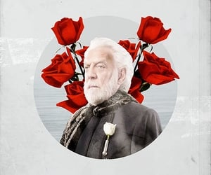 the hunger games, donald sutherland, and president snow image