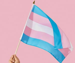 trans, boys, and flag image