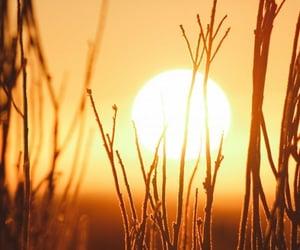sol, verano, and cálido image