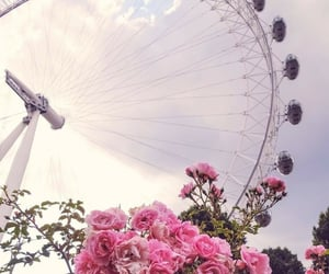 flowers, london, and spring image