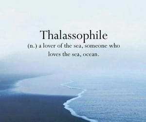 beach, lover, and ocean image
