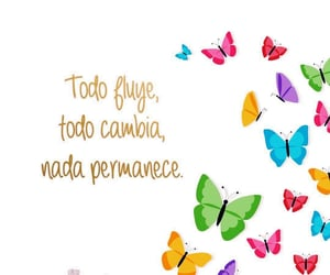 colors, frases, and inspiracion image