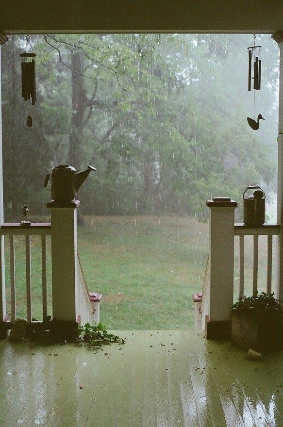 rain, nature, and home image