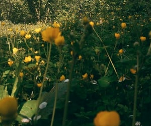 floral, greens, and yellow image