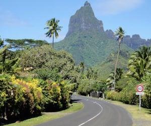 Aloha and vsco image