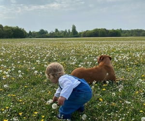 flowers, child, and clouds image