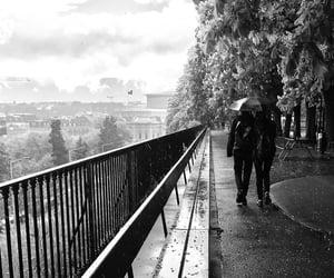 bench, rain, and umbrella image