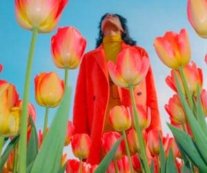 art, tulips, and beautiful image