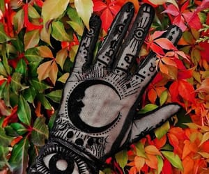 autumn, witchcraft, and gloves image