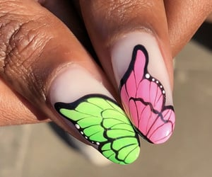 butterfly, pink, and green image