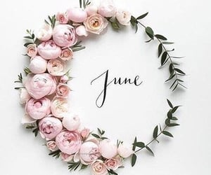 june, flowers, and summer image