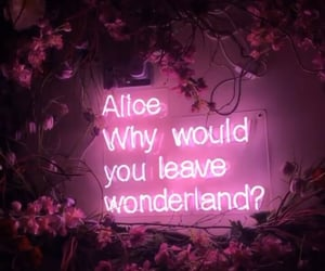¿Alice why would you leave wonderland?