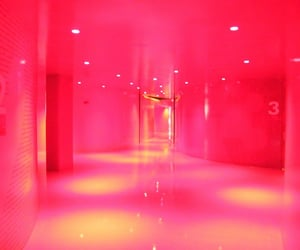 pink, red, and room image
