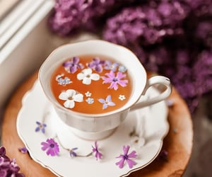aesthetic, flowers, and lilac image