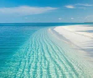 beach, blue, and ocean image