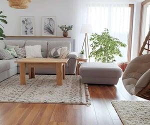 design, Hot, and interior image