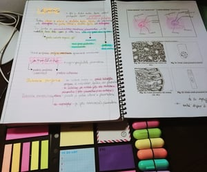 college, medicine, and sticky notes image