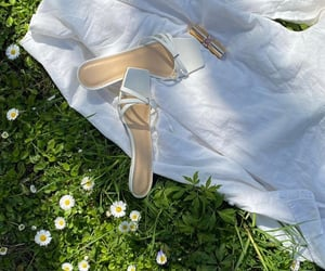 high heel, marguerite, and flowers image