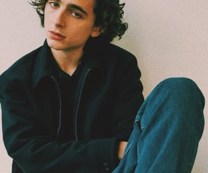 timothee chalamet, call me by your name, and ladybird image