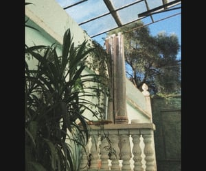 Algeria, garden, and nature image