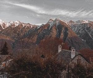 autumn, background, and heidi image