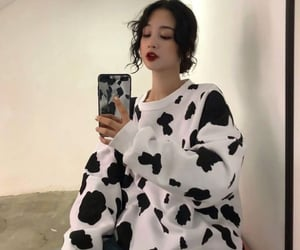 theme, aesthetic, and cow image