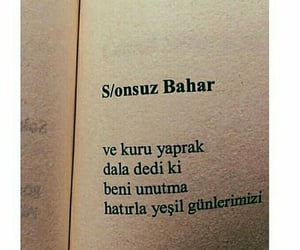 poetry, Turkish, and peom image