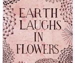 flowers, earth, and quotes image