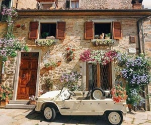flowers, theme, and car image