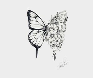 butterfly, drawing, and tattoo image