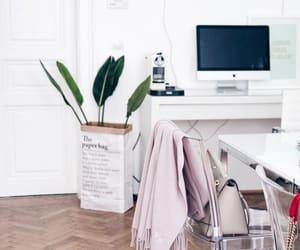 luxury, plants, and room image