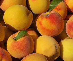 fruit, peach, and yellow image