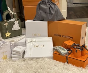 bags, dior, and Louis Vuitton image