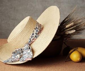 mango and straw hat image