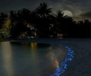 beach, magic, and moonlight image