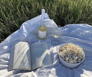 book, picnic, and popcorn image
